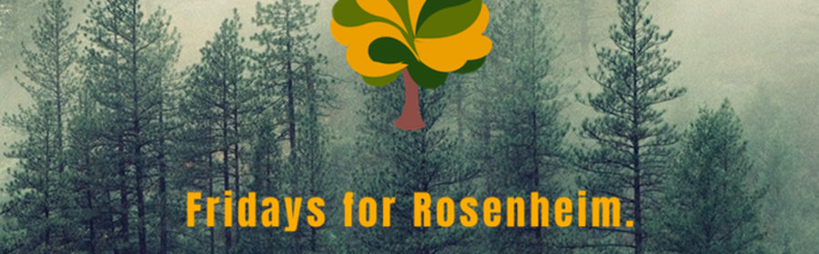 Fridays for Rosenheim